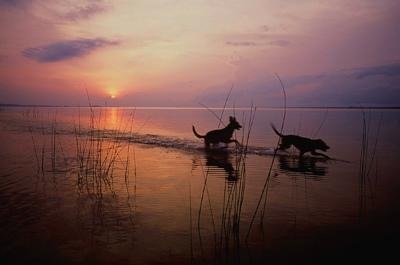 liberia photo