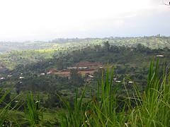 cameroon trip photo