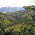 burundi photo