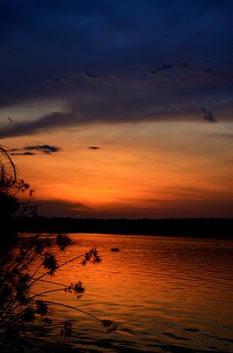 uganda safari photo