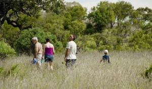 Trekking Safari in Africa
