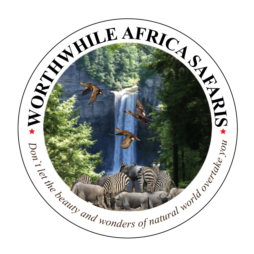 Worthwhile Africa Safaris