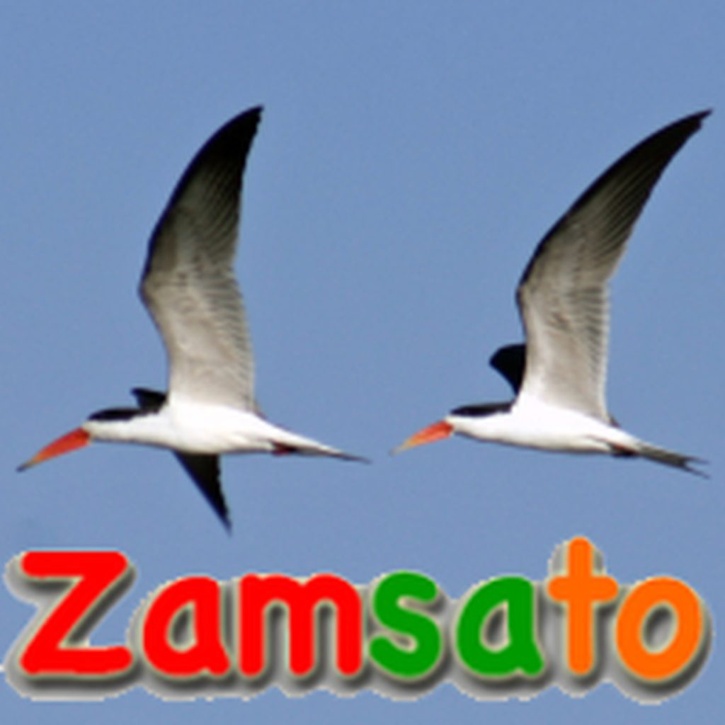 zamsato_logo_with_birds_1024_1024.jpg