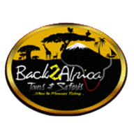 Back2Africa Tours and Safaris logo.png
