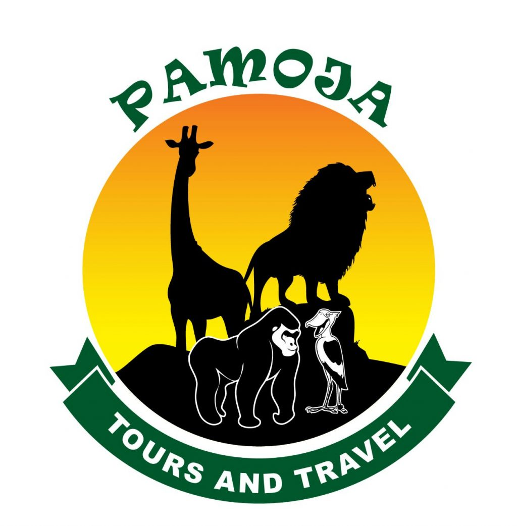 Pamoja Tours and Travels Log