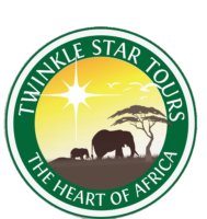 Twinkle Star Tours Logo (1) (1).png