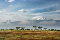 amboseli national park.jpg