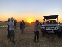 Sundowner with Brave Africa