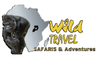 wild travel - Copy.png