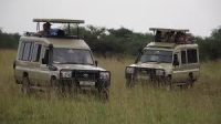 land cruisers for game drive in  Game parks