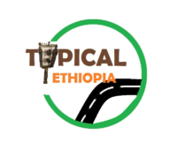 New Final Logo of Typical.png