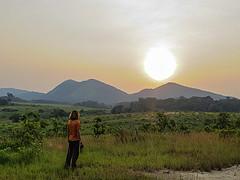 gabon safari