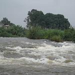 Congo photo