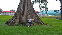 Equatorial Guinea photo
