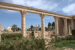 tunisia tours photo