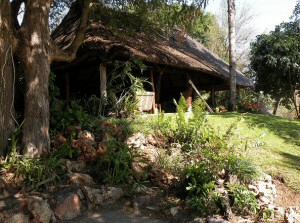 Zimbabwe Safari Lodges