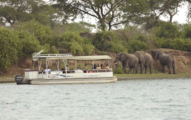 boat cruise safari