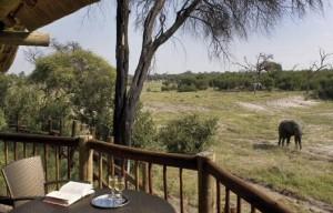 Savuti Elephant Camp Chobe