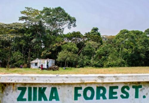 zika forest uganda